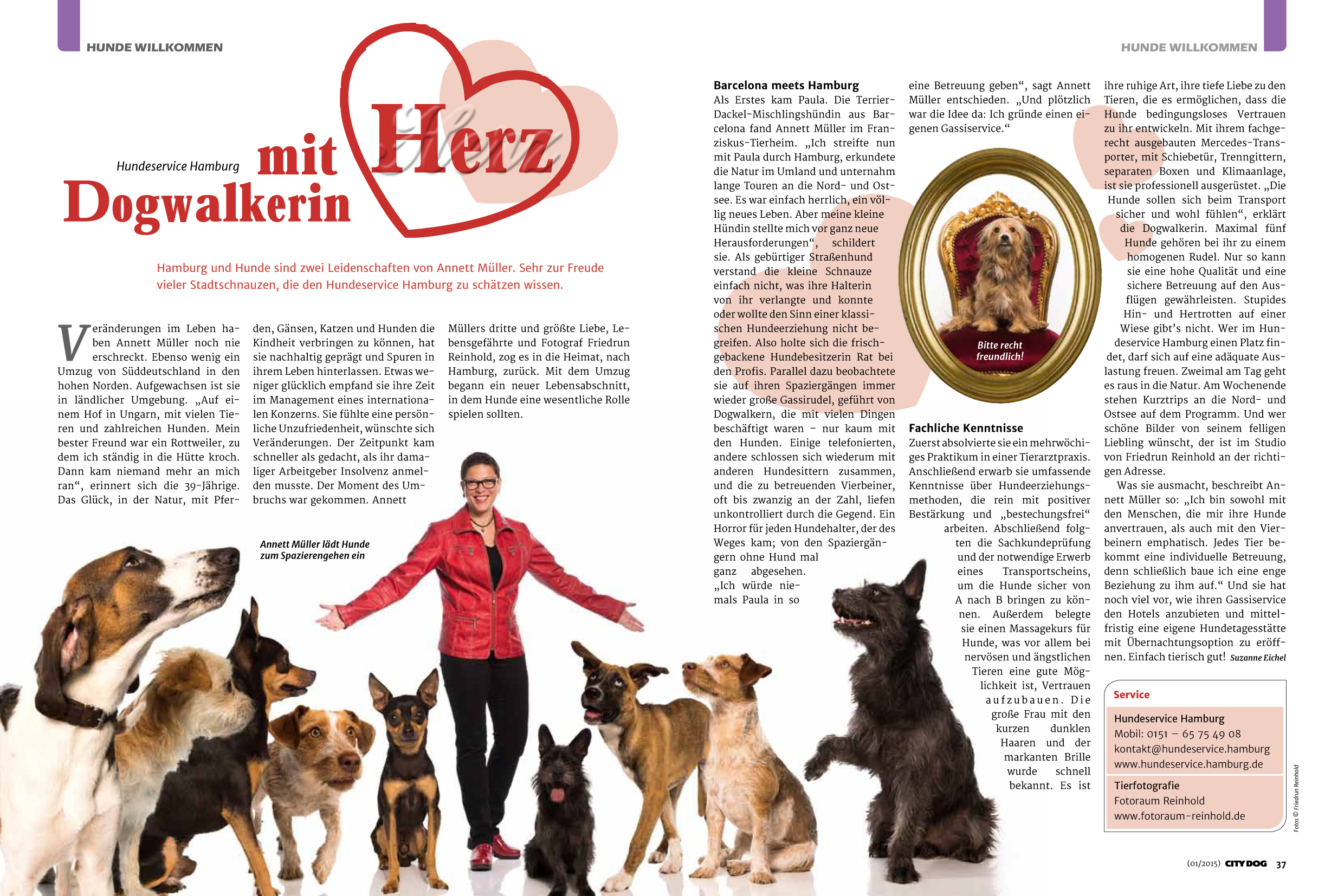 City_Dogs_HH_1_2015